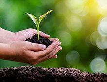 Nachhaltigkeit – ein Selbstversuch